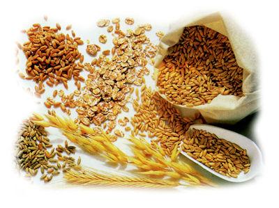 Painea, cerealele, orezul, pastele