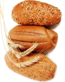 Ghicitoare despre paine