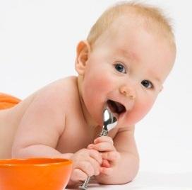 Nutritia sugarului (proteine, glucide, lipide, energie şi apa)