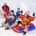 Saniute, boburi, planse si placi de zapada pentru bebelusi si copii la preturi mici. Modele diverse din lemn, plastic, gonflabile sau pliabile, in oferta magazinelor online