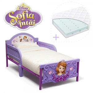 Set pat cu cadru metalic Disney Sofia Intai 3D